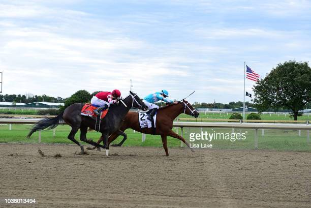 Monomoy Girl rode by Jockey Florent Geroux enters the gate during The Cotillion Stakes at Parx Raceway on September 22 2018 in Bensalem Pennsylvania