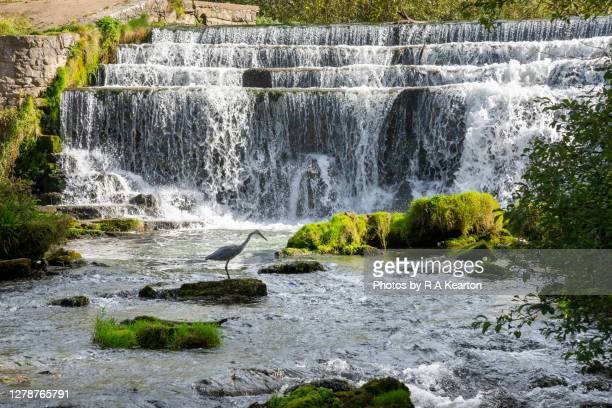 monsal dale weir, peak district, derbyshire, england - peak district national park stock pictures, royalty-free photos & images