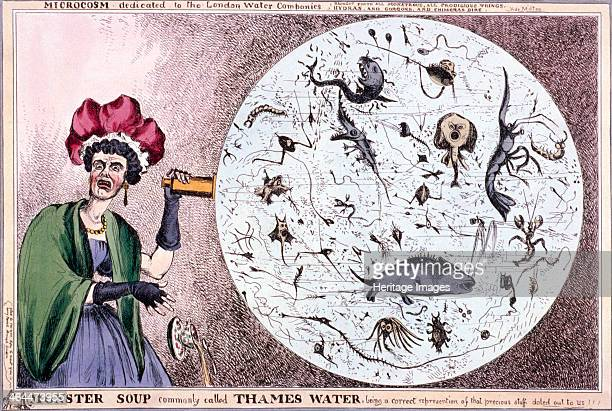 'Monster soup commonly called Thames water, being a correct representation of that precious stuff doled out to us!!!', 1828; showing an ugly woman...