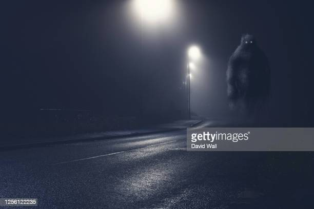 a monster with glowing eyes, floating above an empty road on a foggy winters night - monstruo fotografías e imágenes de stock