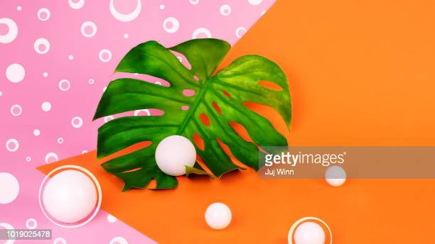 monstera leaf on orange and pink background - colour block stock pictures, royalty-free photos & images