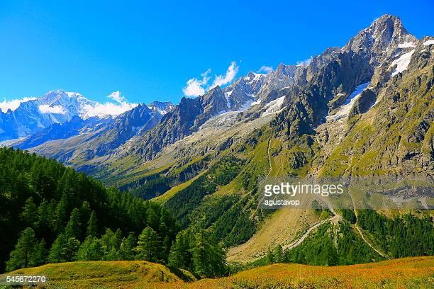 mont blanc, grandes jorasses alpine landscape, pine woods, aosta valley - クールマイヨール ストックフォトと画像
