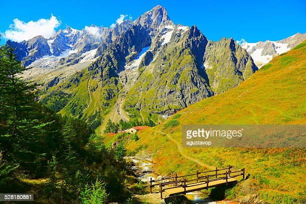 Grandes Jorasses-Mont Blanc et de prairies alpines-Italie