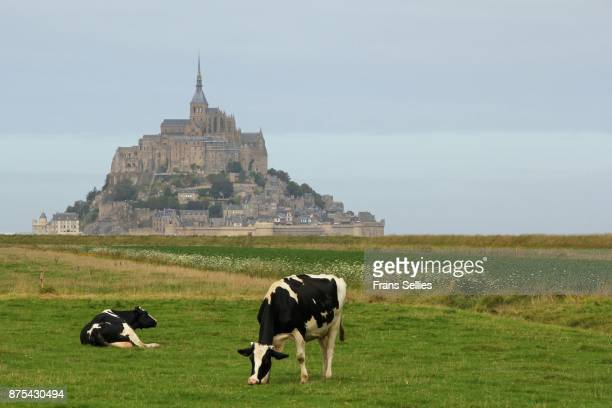 mont saint-michel, france - frans sellies stockfoto's en -beelden