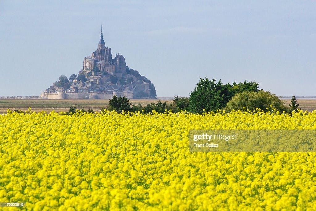 Mont Saint-Michel, France : Nieuwsfoto's