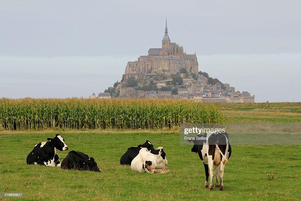 Mont Saint-Michel : Nieuwsfoto's