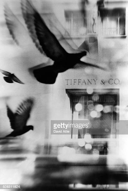 Montage of pigeons in front of Tiffany & Co created for the original publication of 'Breakfast at Tiffany's' in 1957 in New York City, New York.