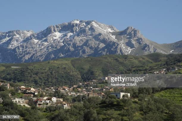 Montagne du Djurdjura Kabylie Algerie