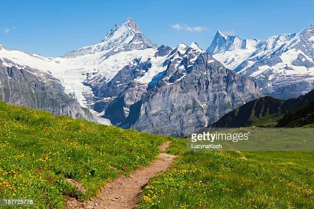 die berge im sommer - lucyna koch stock-fotos und bilder