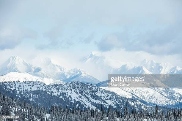 Montana, Glacier National Park, Landscape with mountains and forest in winter