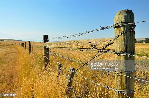 montana landscape - barbed wire stock pictures, royalty-free photos & images
