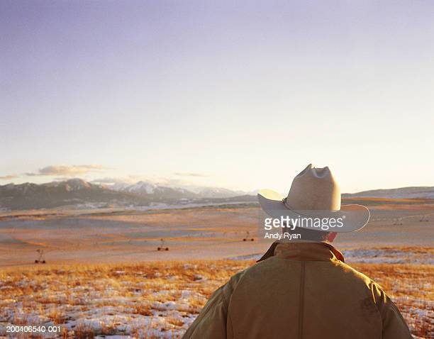 usa, montana, livingston, man looking at scenic, rear view - cowboy hat stock pictures, royalty-free photos & images
