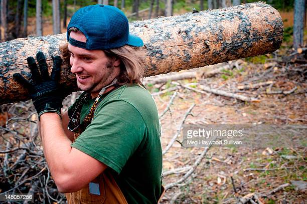 A Montana man carries a large log in the woods.