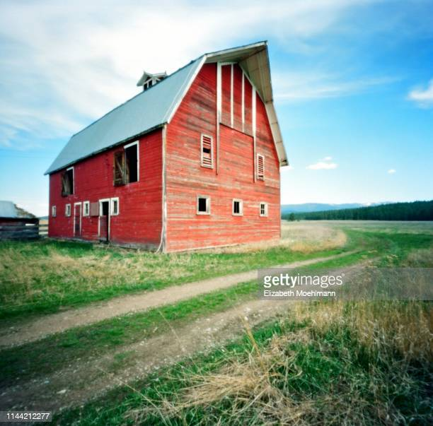 montana red barn - barn stock pictures, royalty-free photos & images