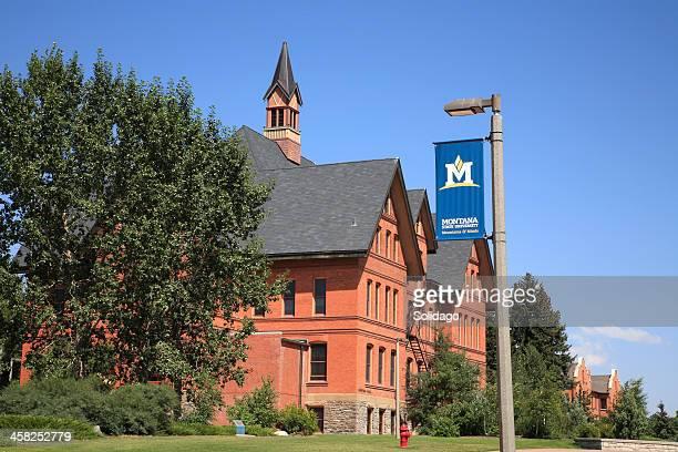 montana state university bozeman - bozeman stock pictures, royalty-free photos & images