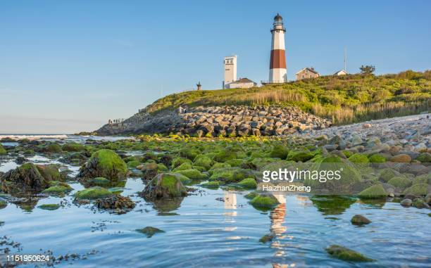 montauk point - state park stock pictures, royalty-free photos & images