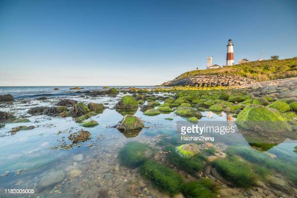montauk point - the end - long island stock pictures, royalty-free photos & images