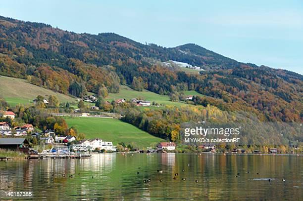 Monte Lake and Village
