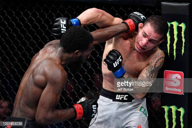 Montel Jackson punches Felipe Colares of Brazil in their bantamweight bout during the UFC Fight Night event at PNC Arena on January 25 2020 in...