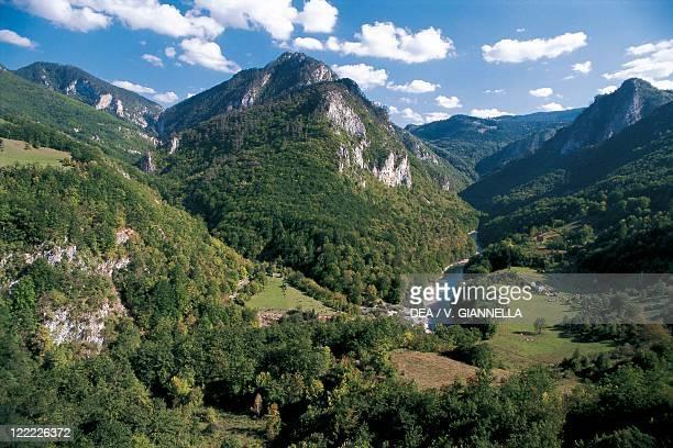 Montenegro Durmitor National Park Landscape around Tara River