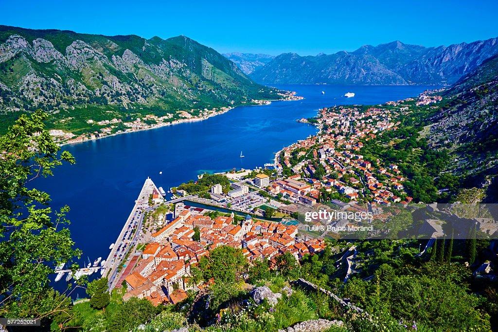Montenegro, Kotor bay and city : Stock Photo
