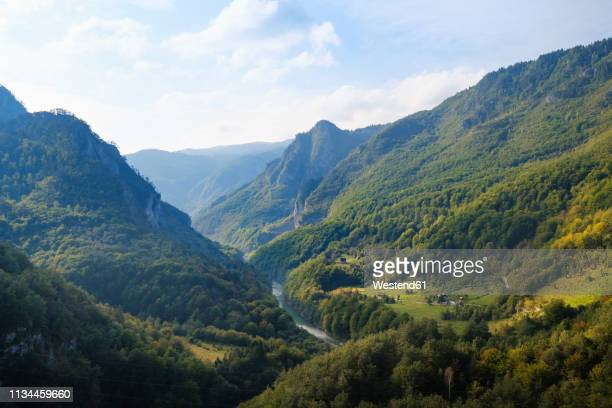 Montenegro, Pljevlja province, Durmitor National Park, Tara Canyon, view from Durdevica Tara Bridge