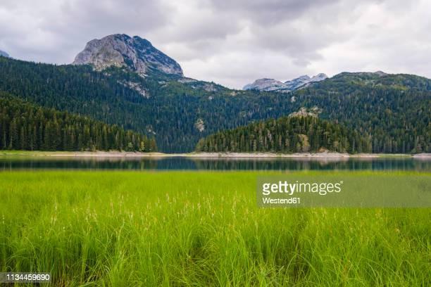 Montenegro, Zabljak province, Durmitor National Park, Black Lake