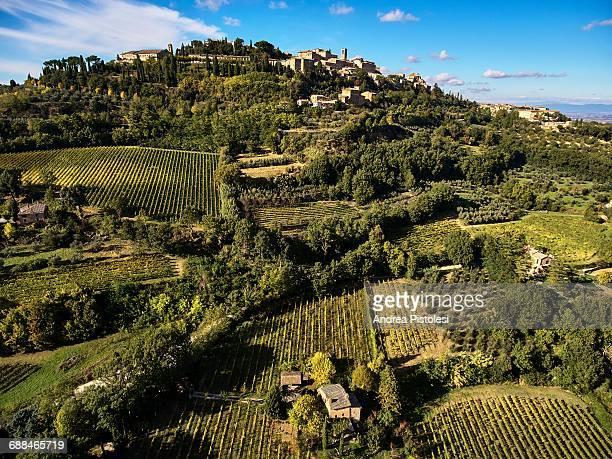 Montepulciano Wine Region, Tuscany, Italy