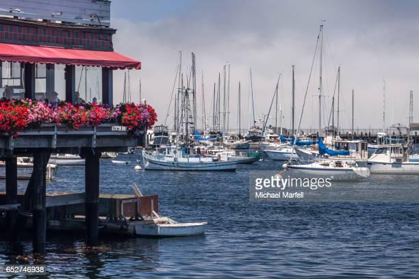 Monterey Harbor