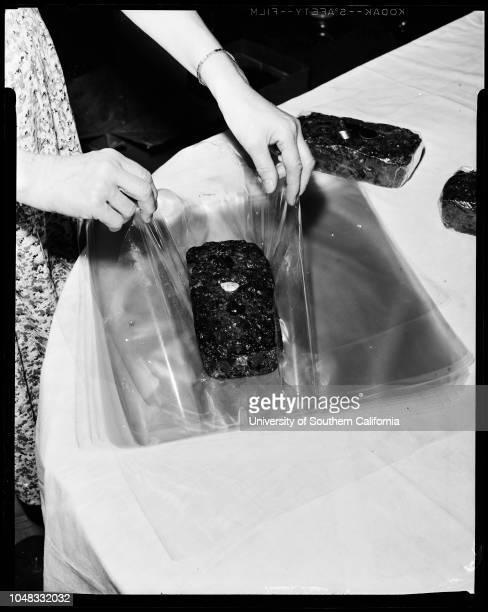 Monterey Park Housewives bake and sell fruitcakes 18 November 1956 Mrs Louise JordanMrs Lory TraubMrsEvelyn LeffMrs Ruby HallettMrs Edyth MonroeMrs...
