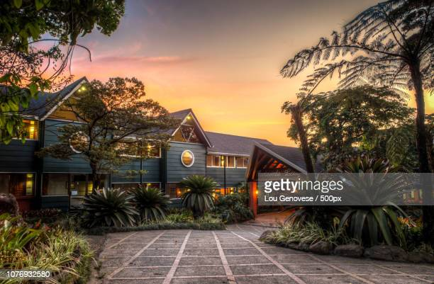 monteverde lodge - houses in antarctica stock pictures, royalty-free photos & images