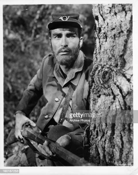 Montgomery Clift holding rifle behind tree in a scene from the film 'Raintree County' 1957