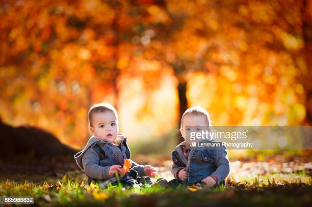 15 month Fraternal Twin Boys Play Together with Leaves on an Autumn Day In Iowa