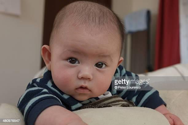 3 month old baby - peter lourenco stock-fotos und bilder