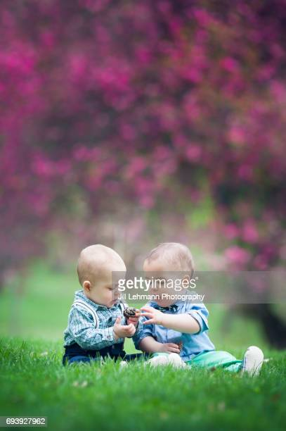 11 month old Fraternal Twin Boys Play with a Pine Cone Together