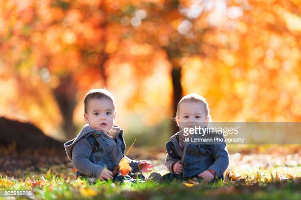 15 Month Old Fraternal Twins Play Together on a Beautiful Fall Day
