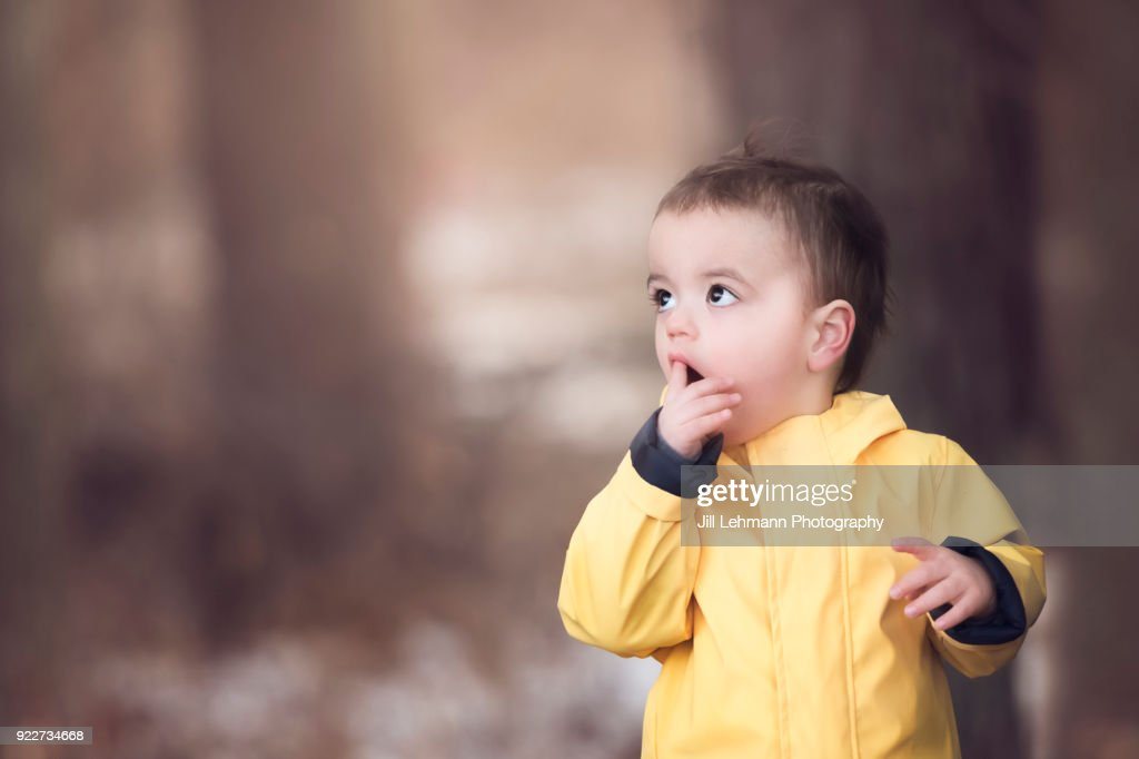 20 Month Old Male Toddler Wears Yellow Rain Jacket in the Woods and Looks up in Wonder : Stock Photo