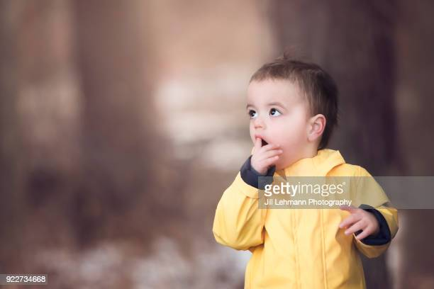 20 Month Old Male Toddler Wears Yellow Rain Jacket in the Woods and Looks up in Wonder