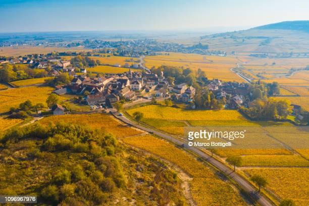 monthelie and cote d'or vineyards, burgundy, france - village photos et images de collection