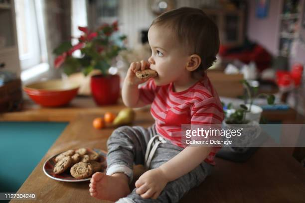 A 18 months old baby boy eating cookies in the kitchen