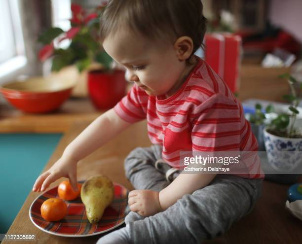 A 18 months old baby boy playing with fruits in the kitchen