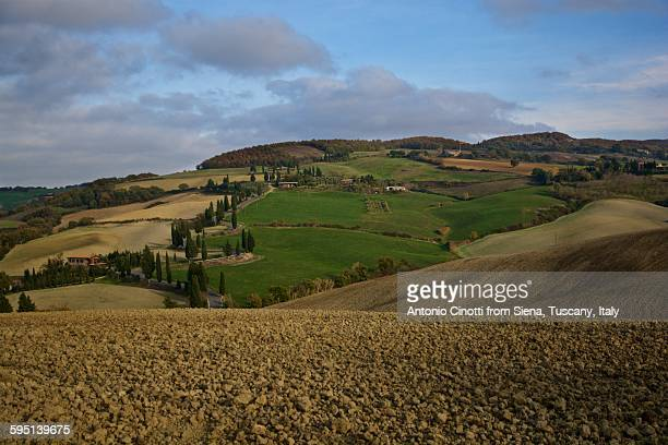 monticchiello in val d'orcia, tuscany - italian cypress stock pictures, royalty-free photos & images