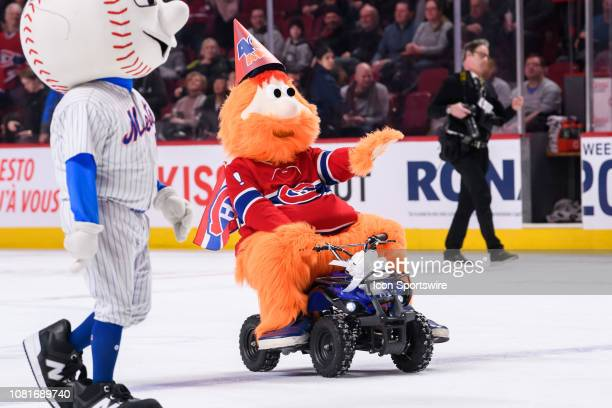 Montreal Canadiens mascot Youppi celebrates his 40th birthday during the second period of the NHL game between the Colorado Avalanches and the...