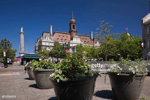 montreal city hall and place jacques cartier - place jacques cartier stock pictures, royalty-free photos & images