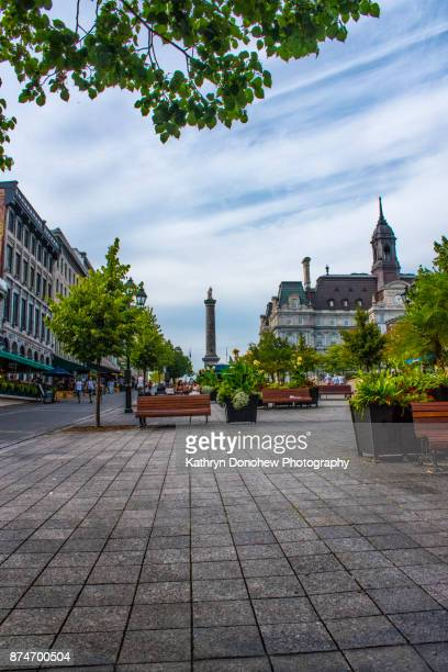 montreal city hall - place jacques cartier stock pictures, royalty-free photos & images