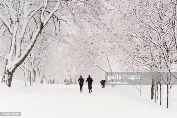 "montreal city park with people enjoying snow storm. - ""martine doucet"" or martinedoucet stock pictures, royalty-free photos & images"