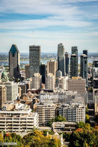 montreal cityscape in autumn. - montréal stock pictures, royalty-free photos & images