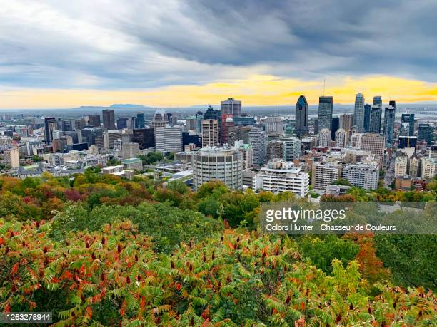 montreal seen from mont royal in fall and during a thunderstorm - extreme weather stock pictures, royalty-free photos & images