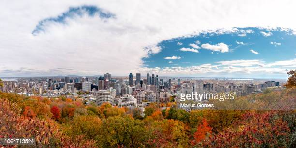 montreal skyline with autumn foliage from mont royal kondiaronk belvedere - montréal stock pictures, royalty-free photos & images