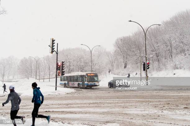"montreal street with people during snowstorm. - ""martine doucet"" or martinedoucet stock pictures, royalty-free photos & images"